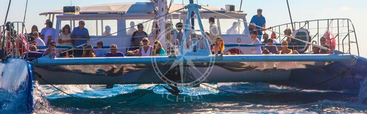 Location catamaran catamaran Cannes Monaco Nice