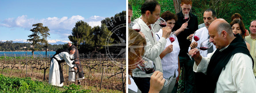 Dégustation vin Iles de Lérins